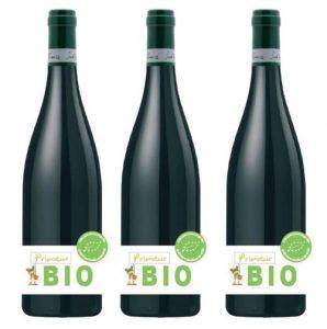 Vin bio et gastronomie